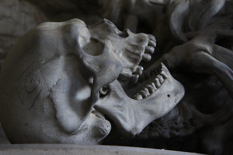 Haunted Library Horror Classics