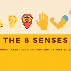 Sensory Science Part Three: Hearing