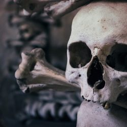 5 Fascinating Fictional Plagues for the Morbidly-Minded