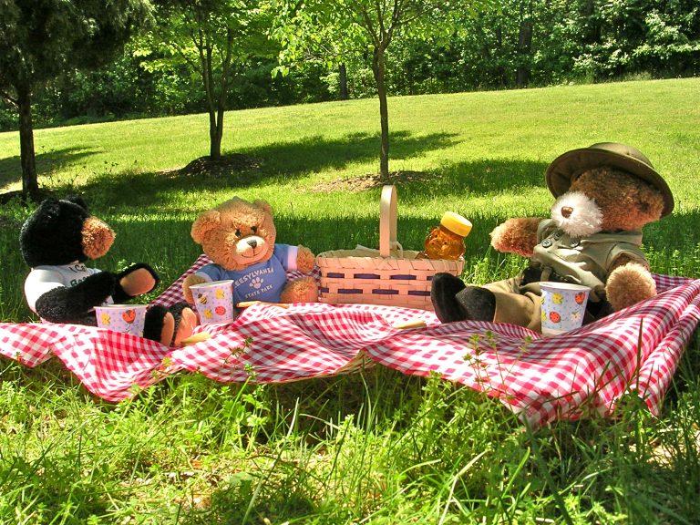Suma's Teddy Bear Picnic