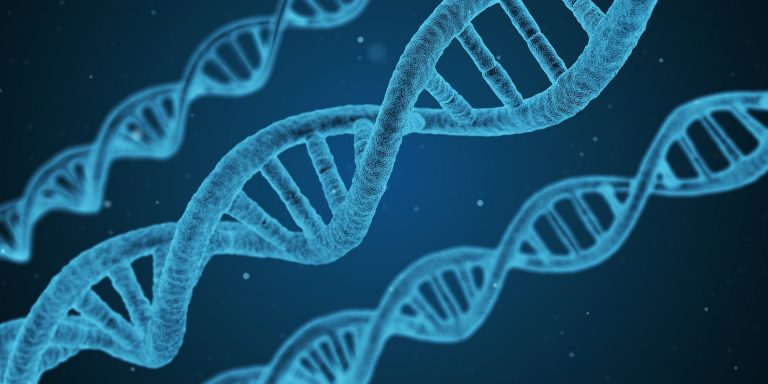 Read more about the article Health on the Shelf:  Epi-genetically Speaking