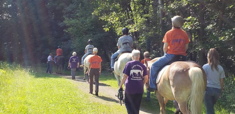 Read more about the article STEAM Week: Therapeutic Horsemanship
